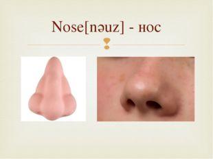Nose[nәuz] - нос 