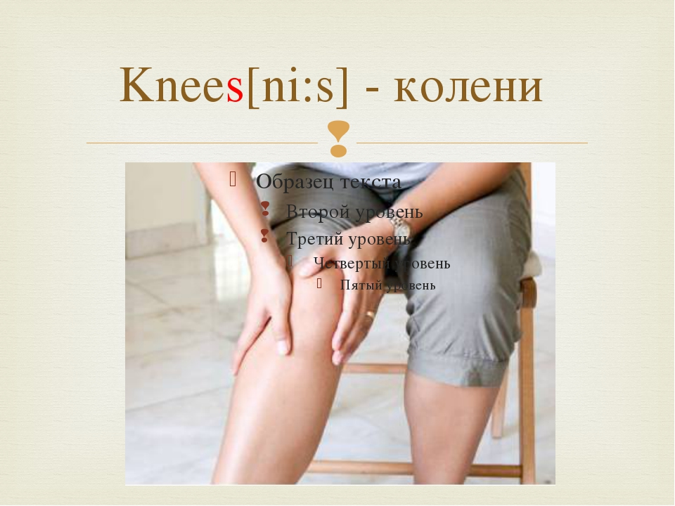 Knees[ni:s] - колени 
