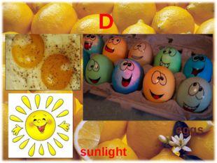 D eggs sunlight