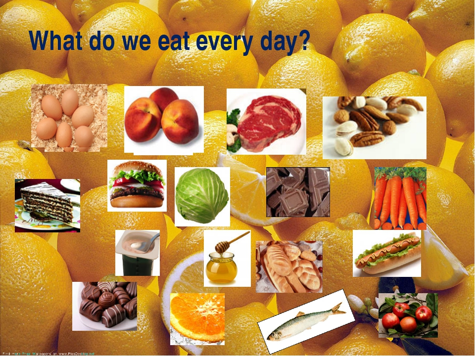 What do we eat every day?
