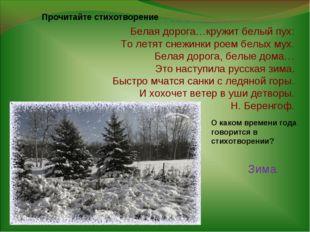 Белая дорога…кружит белый пух: То летят снежинки роем белых мух. Белая дорога
