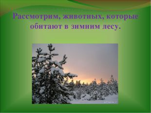 Рассмотрим, животных, которые обитают в зимним лесу.