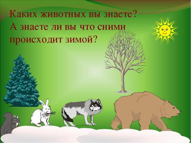 Каких животных вы знаете? А знаете ли вы что сними происходит зимой?