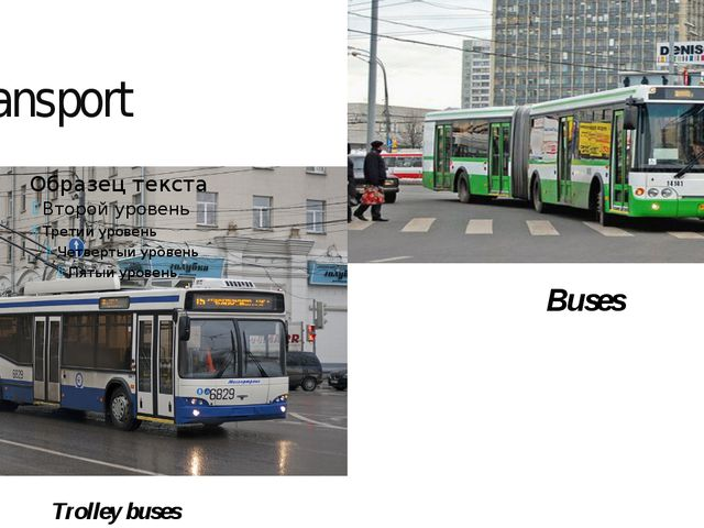 Transport Trolley buses Buses