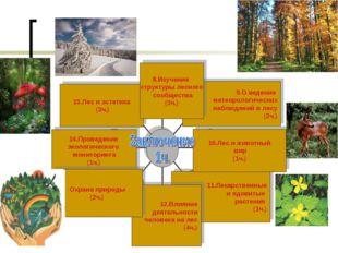 8.Изучение структуры лесного сообщества (3ч.) 11.Лекарственные и ядовитые рас