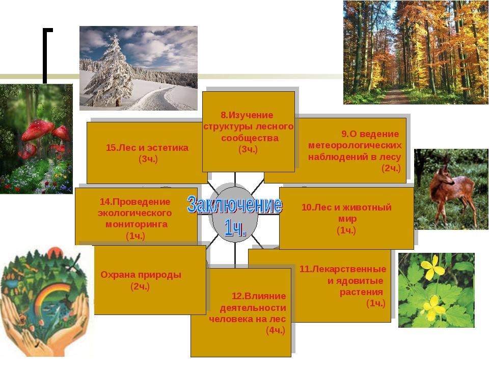 8.Изучение структуры лесного сообщества (3ч.) 11.Лекарственные и ядовитые рас...