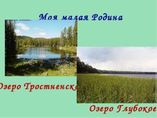 Моя малая Родина Озеро Тростненское Озеро Глубокое