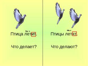 Птица летит. Что делает? Птицы летят. Что делают? Ед. ч. Мн.ч.