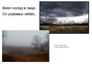 Веял холод в лицо От угрюмых небес, И, бог знает о чём, Плакал сумрачный лес.