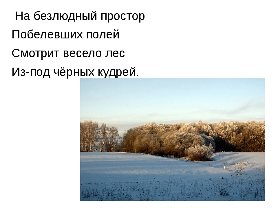 На безлюдный простор Побелевших полей Смотрит весело лес Из-под чёрных кудрей.