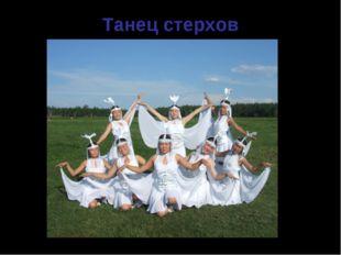 Танец стерхов