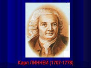 Карл ЛИННЕЙ (1707-1778)