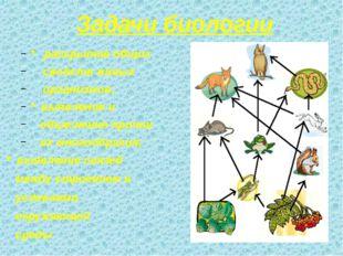 Задачи биологии * раскрытие общих свойств живых организмов; * выявление и объ