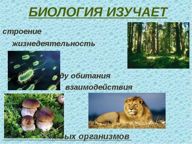 БИОЛОГИЯ ИЗУЧАЕТ строение жизнедеятельность среду обитания взаимодействия жив...