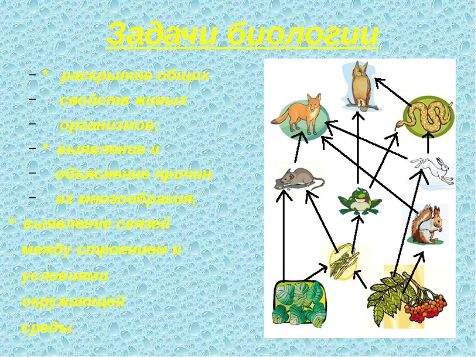 Задачи биологии * раскрытие общих свойств живых организмов; * выявление и объ...