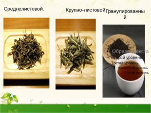 Гранулированный . Среднелистовой. Крупно-листовой. Разновидности чая. Листово