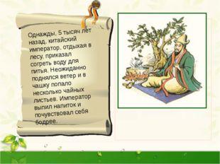 Однажды, 5 тысяч лет назад, китайский император, отдыхая в лесу, приказал со