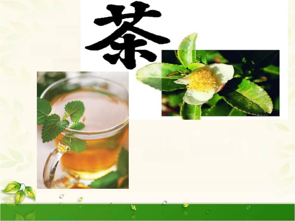 Как растет чай?