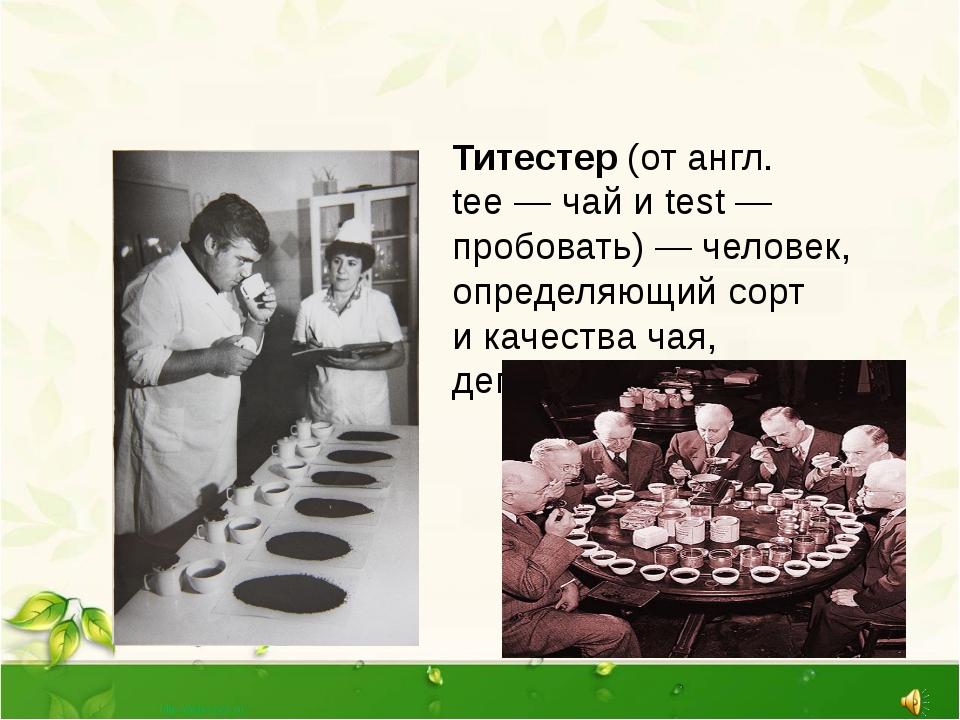 Титестер (от англ. tee—чай иtest— пробовать)— человек, определяющий сор...
