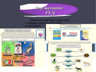 Формирование УУД Применение ИКТ для подготовки к Государственной аттестации в