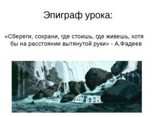 Эпиграф урока: «Сбереги, сохрани, где стоишь, где живешь, хотя бы на расстоян