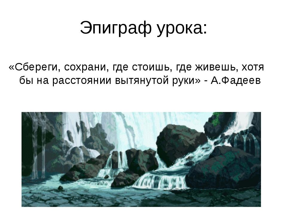 Эпиграф урока: «Сбереги, сохрани, где стоишь, где живешь, хотя бы на расстоян...