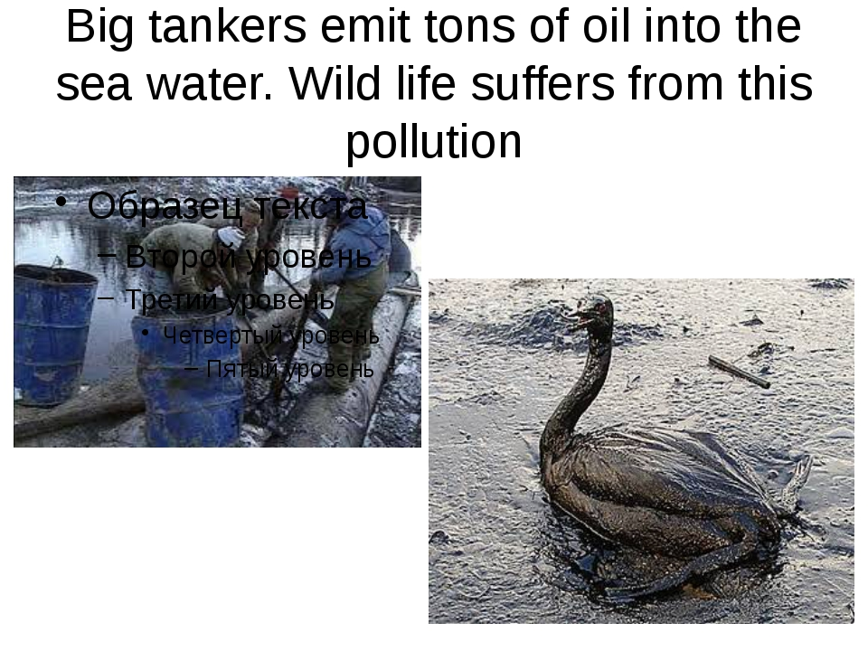 Big tankers emit tons of oil into the sea water. Wild life suffers from this...