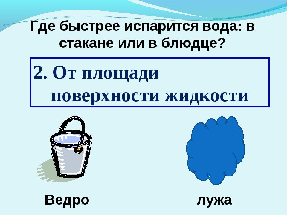 2. От площади поверхности жидкости Ведро лужа Где быстрее испарится вода: в с...