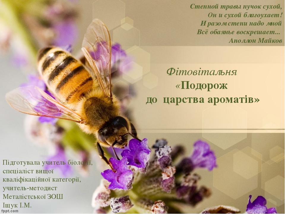 Фітовітальня «Подорож до царства ароматів»  Степной травы пучок сухой, Он и...