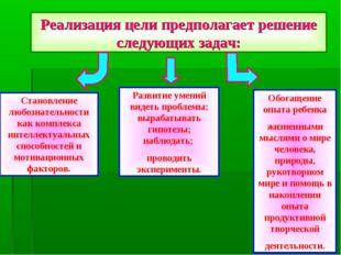 Реализация цели предполагает решение следующих задач: Становление любознатель