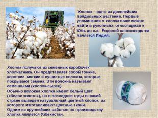 Текстильные материалы Натуральные Химические Растительного происхождения Живо