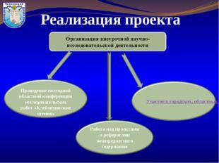 Реализация проекта Организация внеурочной научно-исследовательской деятельнос