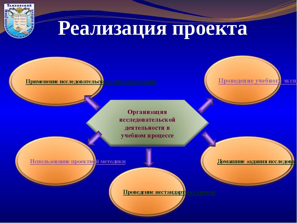 Реализация проекта Организация исследовательской деятельности в учебном проце...