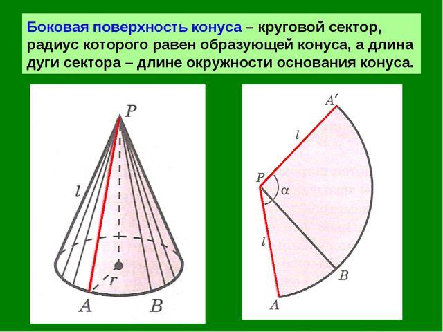 Боковая поверхность конуса – круговой сектор, радиус которого равен образующе...