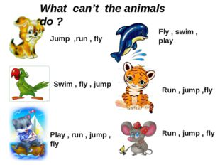 Jump ,run , fly Swim , fly , jump Play , run , jump , fly Fly , swim , play R