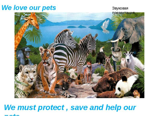 We love our pets We must protect , save and help our pets Звуковая презентация