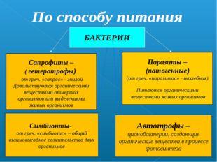 БАКТЕРИИ Сапрофиты – ( гетеротрофы) от греч. «сапрос» - гнилой Довольствуются