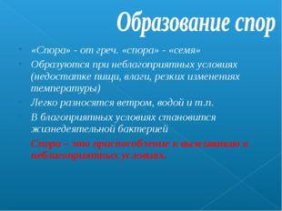 «Спора» - от греч. «спора» - «семя» Образуются при неблагоприятных условиях (