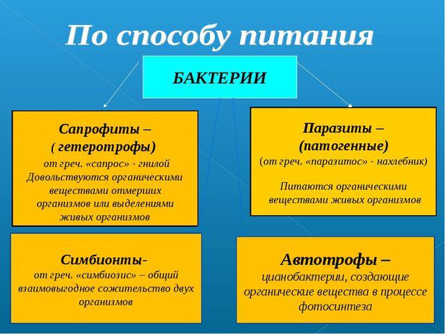 БАКТЕРИИ Сапрофиты – ( гетеротрофы) от греч. «сапрос» - гнилой Довольствуются...