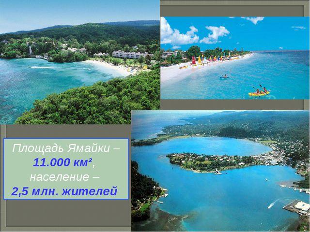 Площадь Ямайки – 11.000 км², население – 2,5 млн. жителей