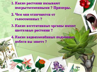 Какие растения называют покрытосеменными ? Примеры. Чем они отличаются от гол