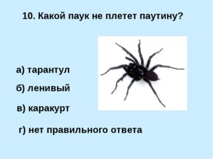 10. Какой паук не плетет паутину? б) ленивый а) тарантул в) каракурт г) нет п