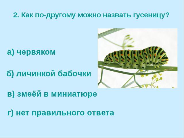 2. Как по-другому можно назвать гусеницу? а) червяком б) личинкой бабочки в)...