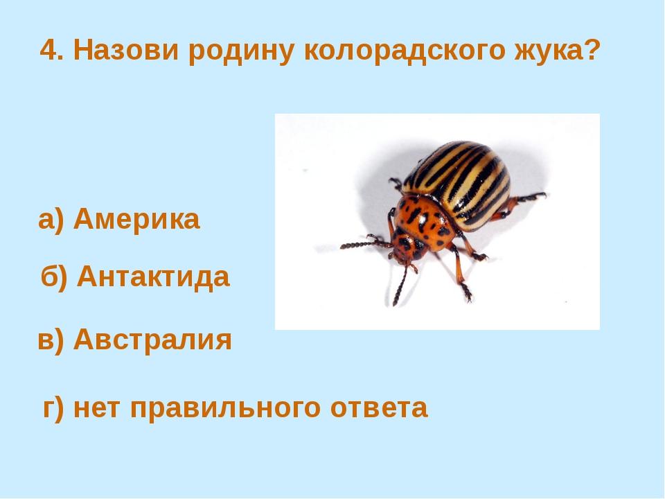 4. Назови родину колорадского жука? б) Антактида а) Америка в) Австралия г) н...