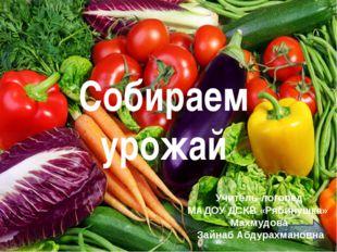 Собираем урожай Учитель-логопед МАДОУ ДСКВ «Рябинушка» Махмудова Зайнаб Абдур