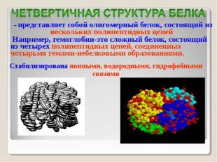 – представляет собой олигомерный белок, состоящий из нескольких полипептидны