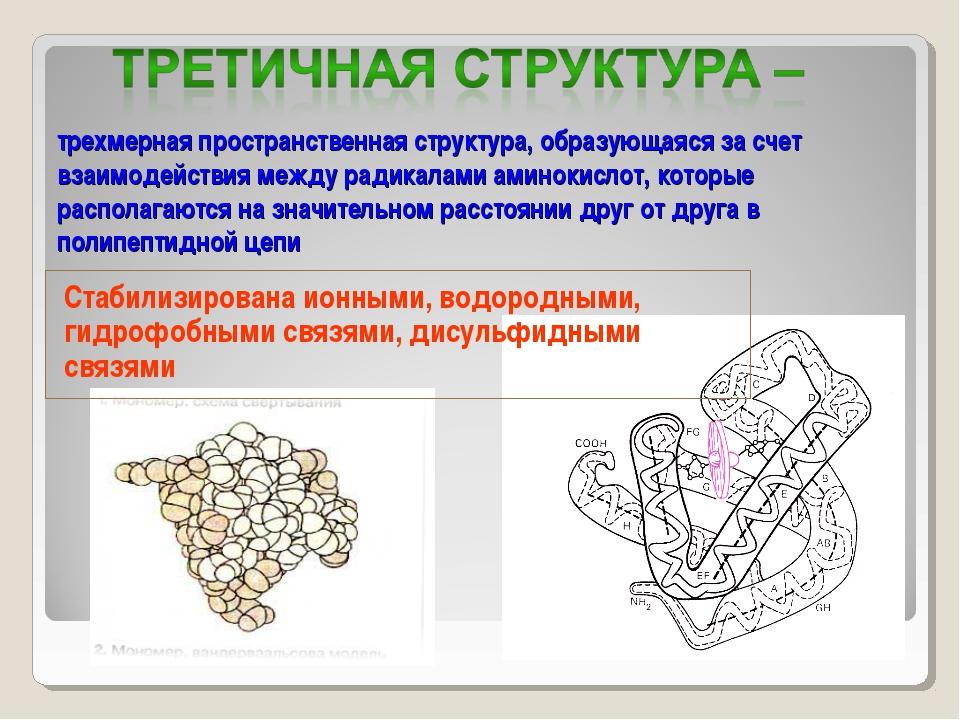 трехмерная пространственная структура, образующаяся за счет взаимодействия м...