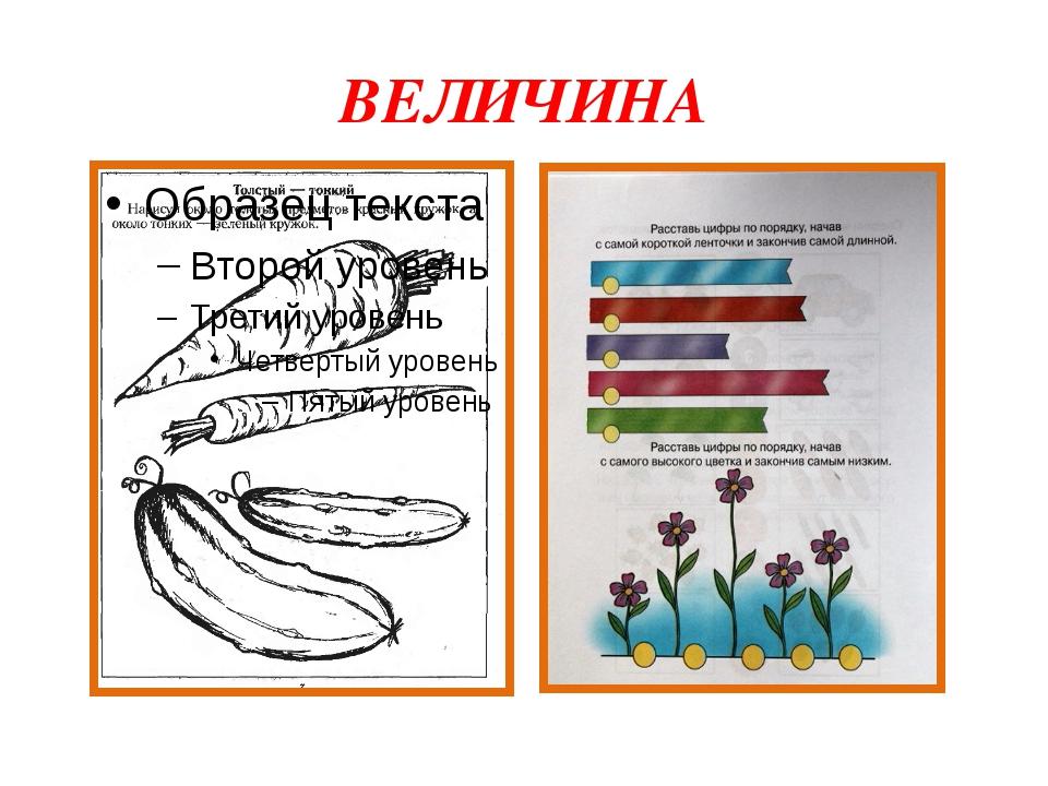 ВЕЛИЧИНА