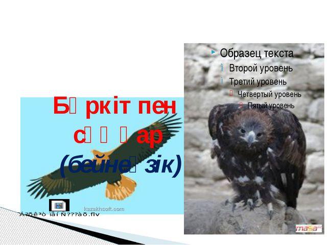 Бүркіт пен сұңқар (бейнеүзік)
