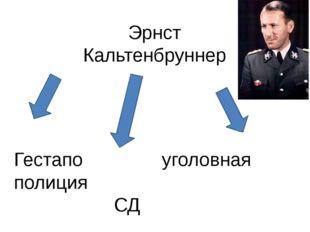 Эрнст Кальтенбруннер Гестапо уголовная полиция СД